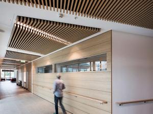 akustik tavan panelleri
